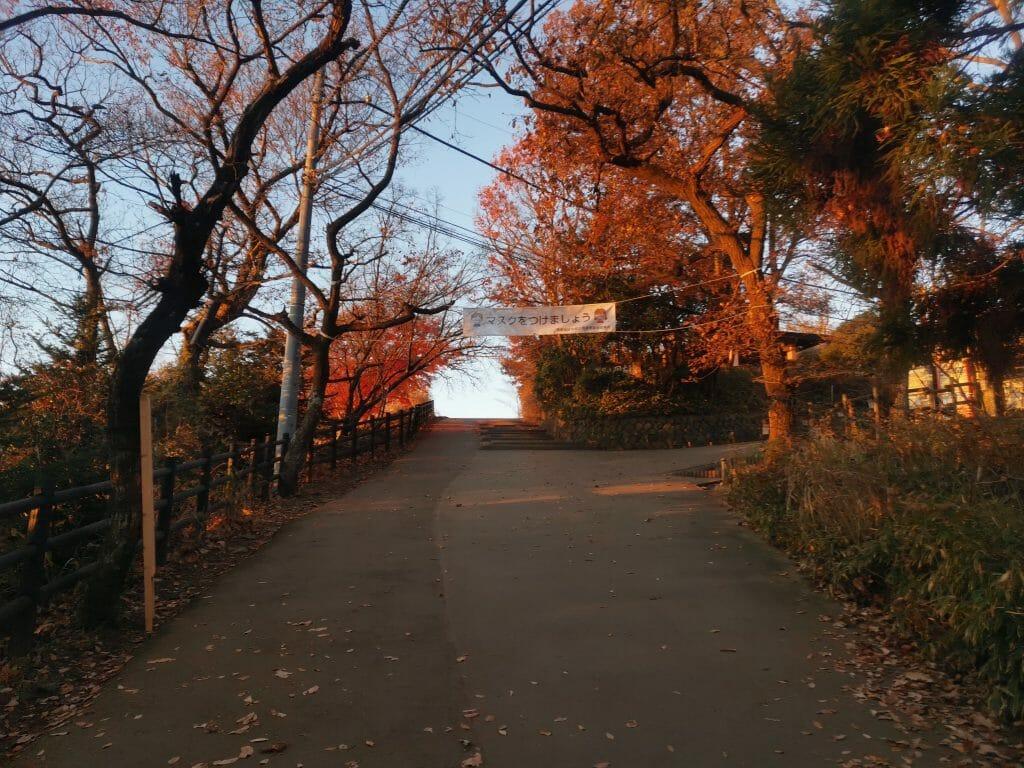 高尾山山頂手前2020年12月8日早朝