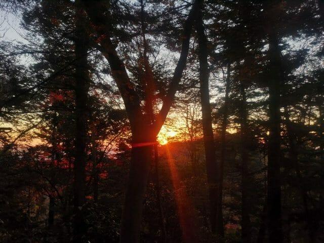 高尾山山頂手前の日の出写真画像